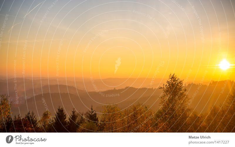 Abendsonne Oberberg Umwelt Natur Landschaft Himmel Wolkenloser Himmel Sonne Sonnenaufgang Sonnenuntergang Sonnenlicht Frühling Sommer Herbst Wetter