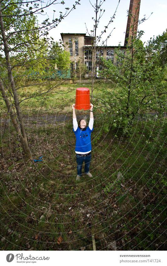 Zylinder Mensch Mann Natur Baum Suche Erfolg Körperhaltung festhalten Hut Mütze Pokal heben Müllbehälter Eimer strecken Feld