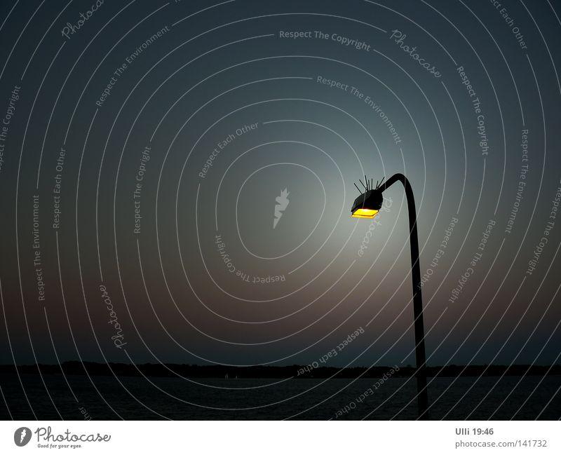 Landeverbot. Farbfoto Gedeckte Farben Außenaufnahme Menschenleer Textfreiraum links Textfreiraum oben Abend Dämmerung Zentralperspektive Totale ruhig Meer Lampe