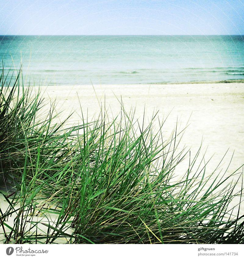 another day at the beach Wasser Himmel Meer blau Strand Ferien & Urlaub & Reisen ruhig Ferne Sand Küste Wetter Horizont Spaziergang Stranddüne Ostsee Darß