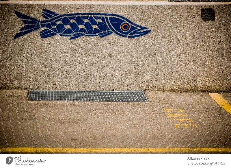 Hechtparkplatz Wand Mauer Putz Fisch blau Parkplatz parken Graffiti Aufschrift Schilder & Markierungen Raubfisch sprühen gesprüht Café Buchstaben Schweiz
