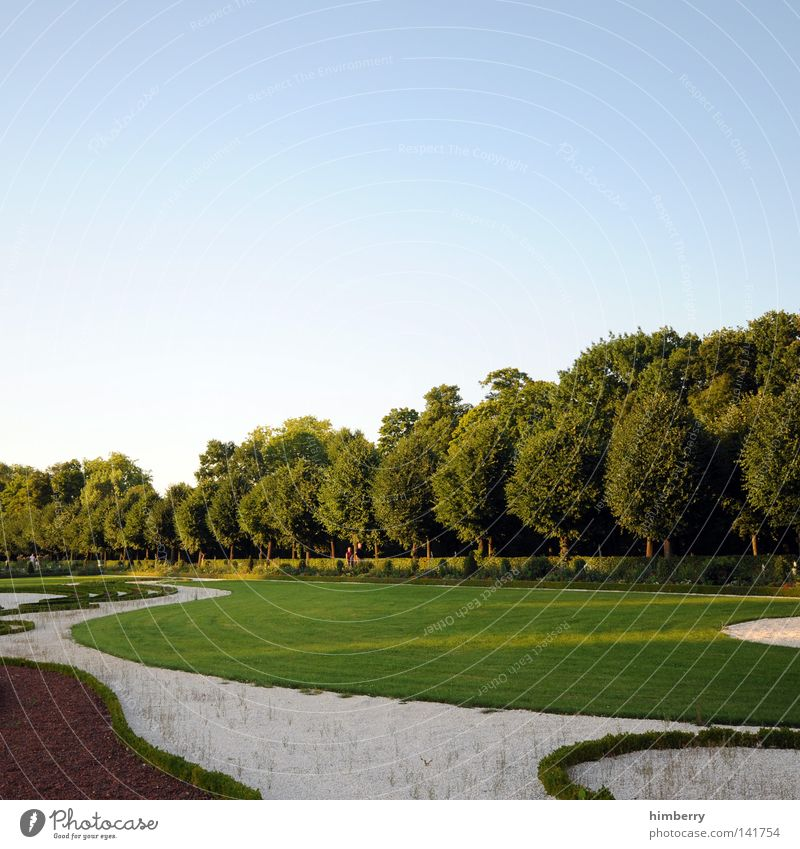kreisdiagramm Natur Baum Blume ruhig Wald Erholung Landschaft Wiese Berlin Wege & Pfade Garten Kunst Stimmung Park Design Perspektive