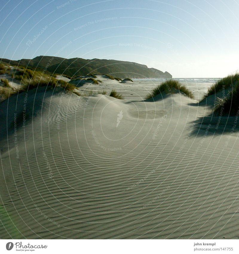 cellulite Himmel Meer Strand Ferne Lampe Gras Sand Küste Erde leer Stranddüne Neuseeland diffus Farewell Spit Abel Tasman National Park