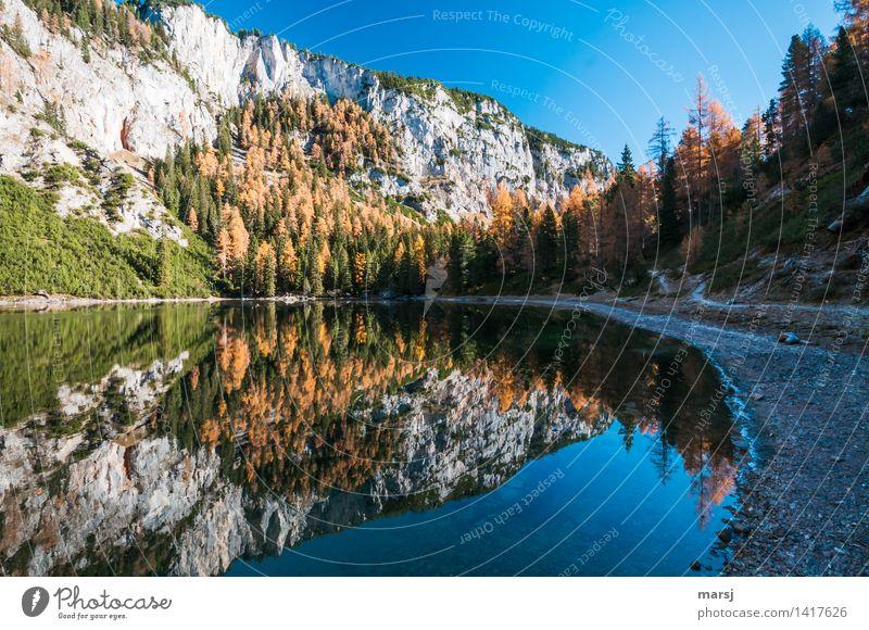 Ein Wahnsinnsherbst! Natur Ferien & Urlaub & Reisen Baum Erholung Landschaft ruhig Wald Berge u. Gebirge Herbst See Felsen träumen Tourismus leuchten Idylle