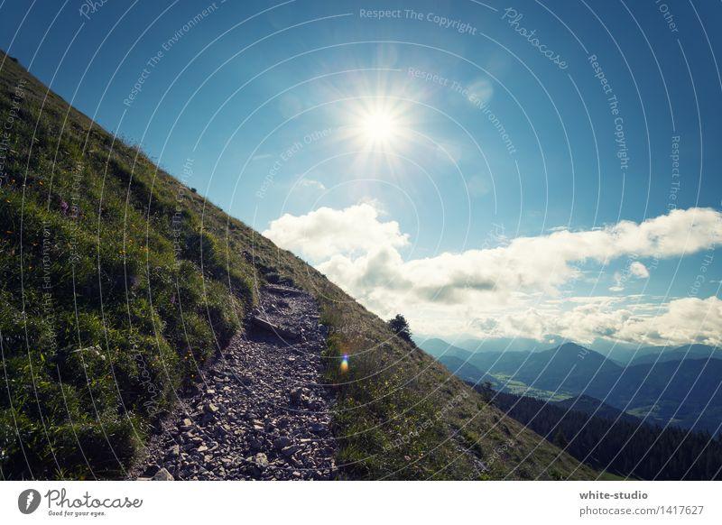 Wandertag Umwelt Natur Landschaft wandern Wanderpfad Fußweg Alpen Alpenvorland Spaziergang Sonne Schönes Wetter Berge u. Gebirge Hügel grün Sommer Sommerurlaub