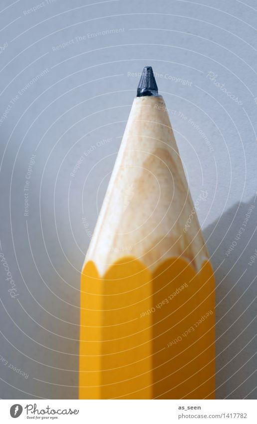 Bleistift Farbe gelb grau Schule orange Büro Freizeit & Hobby Beginn Kreativität groß lernen Spitze Studium Papier Bildung schreiben