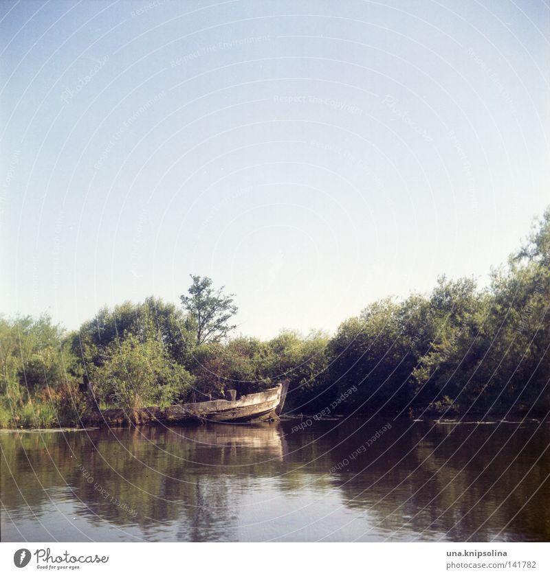 schiffsfriedhof blau alt Wasser Meer Umwelt Holz See Wasserfahrzeug Fluss Seeufer verfallen Ostsee Flussufer Umweltschutz Friedhof Nationalpark