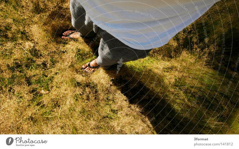 rumstehen Mensch Mann Ferien & Urlaub & Reisen grün Pflanze Sommer Ferne Wiese Wärme oben Gras Freiheit Garten Beine Fuß hell