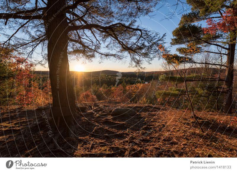 Abendsonne Wellness harmonisch Wohlgefühl Zufriedenheit Ferien & Urlaub & Reisen Tourismus Ausflug Abenteuer Ferne Freiheit Umwelt Natur Landschaft Urelemente