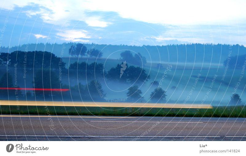 Geisterfahrer II Baum Straße Wald Landschaft Nebel Geschwindigkeit KFZ fahren durchsichtig Geister u. Gespenster Autoscheinwerfer Landstraße