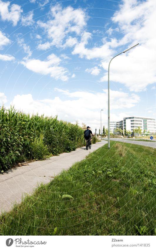 heimweg Fahrradweg Stil Laterne Feld grün Wiese Verkehr Gebäude Garching Sommer Wolken Kraft Mensch Wege & Pfade Straße hochbrück Kontrast Himmel Sonne blau