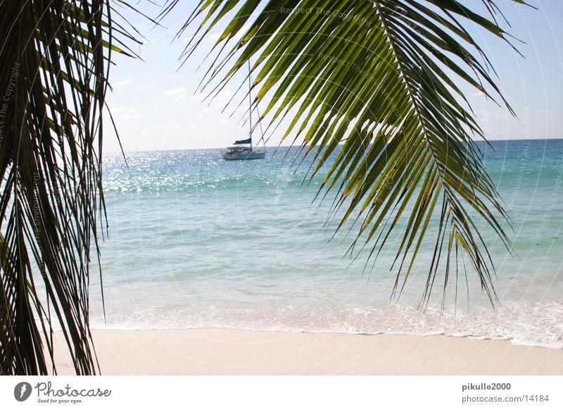strandblick Meer Strand Ferien & Urlaub & Reisen Sand Wasserfahrzeug Zufriedenheit