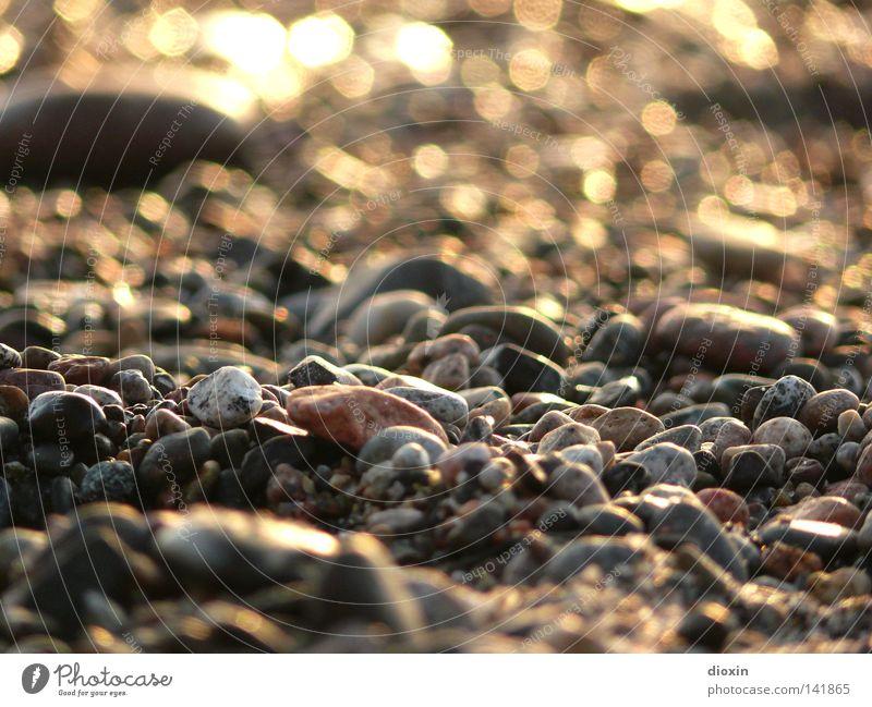 korsischer Kies weiß rot Sommer Strand Ferien & Urlaub & Reisen schwarz Stein Sand braun orange Küste glänzend Erde Insel Bodenbelag Abenddämmerung
