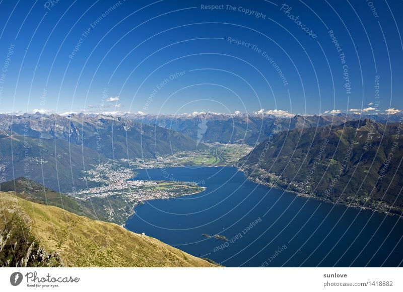 Blick auf die Schweizer Berge und auf den Lago Maggiore Natur Ferien & Urlaub & Reisen Sommer Wasser Baum Landschaft Wald Berge u. Gebirge Umwelt Frühling Gras