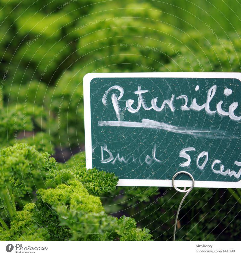 50 cent Kräuter & Gewürze Zutaten Petersilie Angebot Werbung Preisschild frisch Natur Pflanze Bündel Sprechgesang Rapper Hiphop Deutschland Landwirtschaft