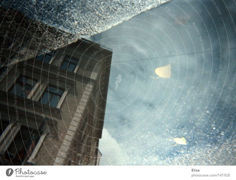 Spurensuche III Reflexion & Spiegelung Wasser Himmel Herbst Wetter Regen Blatt Gebäude Straße nass Pfütze Altbau Asphalt Bordsteinkante Klarheit Regenspuren