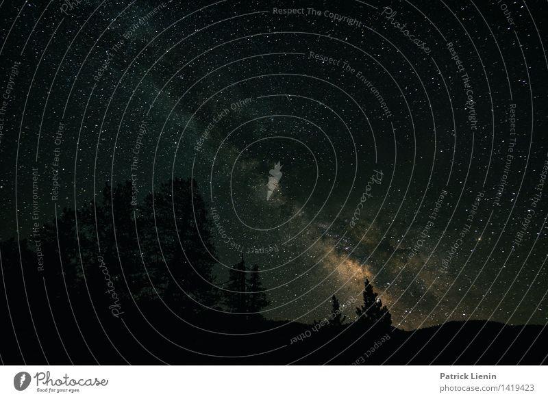 Nachtschicht Himmel Natur Ferien & Urlaub & Reisen Sommer Landschaft Ferne dunkel Wald Berge u. Gebirge Umwelt Freiheit Zufriedenheit Wetter Tourismus Ausflug