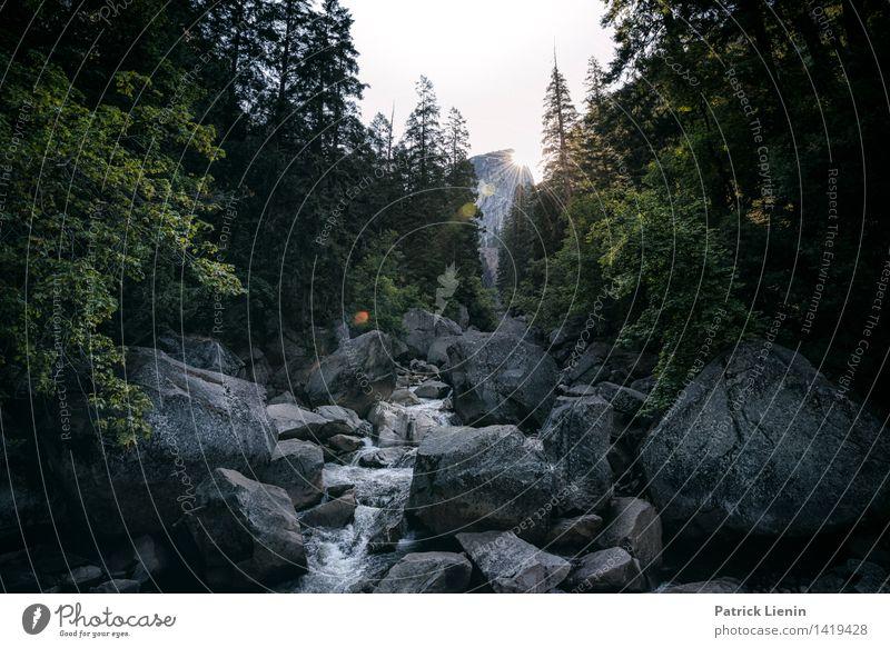 Little Yosemite Valley Himmel Natur Pflanze Sommer Baum Landschaft Erholung ruhig Ferne Wald Berge u. Gebirge Umwelt Leben Freiheit Stimmung Felsen