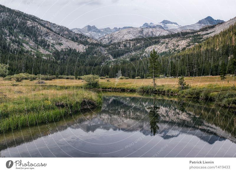 Lyell Canyon Tourismus Ausflug Abenteuer Ferne Freiheit Umwelt Natur Landschaft Urelemente Erde Wasser Himmel Sommer Klima Klimawandel Wetter Schönes Wetter