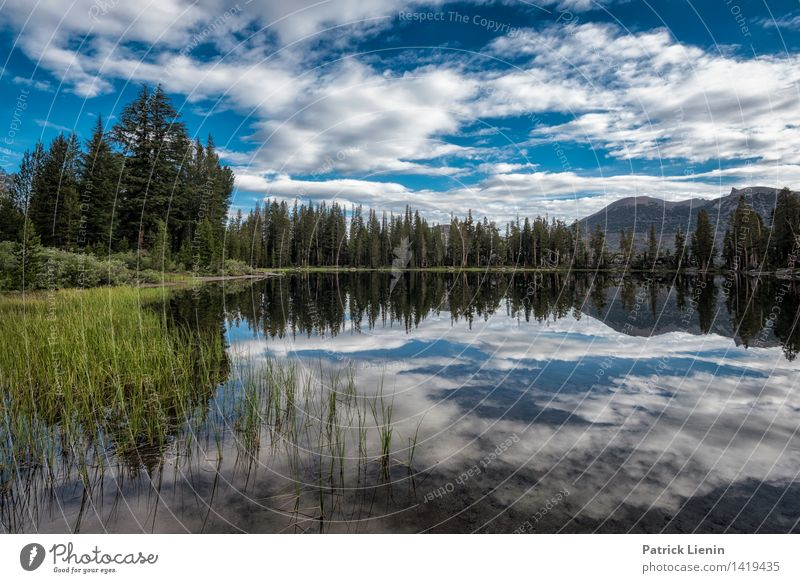 Morgenstund Himmel Natur Ferien & Urlaub & Reisen Sommer Wasser Sonne Erholung Landschaft Wolken ruhig Ferne Wald Berge u. Gebirge Umwelt Küste Freiheit