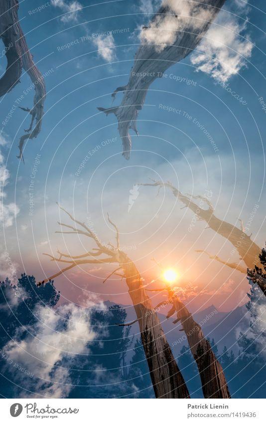Dremascape (3) Himmel Natur Ferien & Urlaub & Reisen Pflanze Sommer Baum Erholung Landschaft Wolken Ferne Wald Berge u. Gebirge Umwelt Freiheit träumen