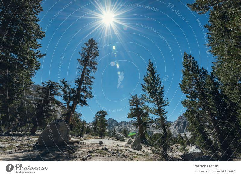 Yosemite National Park Himmel Natur Pflanze Sommer Baum Sonne Erholung Landschaft ruhig Ferne Wald Berge u. Gebirge Umwelt Freiheit Tourismus Wetter