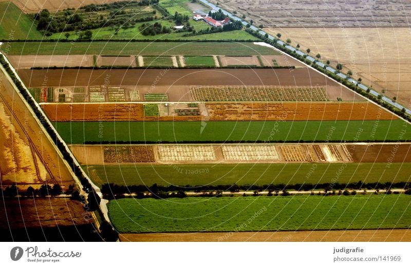 Feld- und Wiesengeometrie Baum grün Luftaufnahme Haus Ernährung Straße Farbe Landschaft Linie braun Flugzeug fliegen Ordnung Streifen