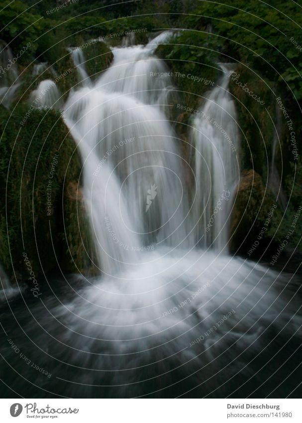 Wasserfall deluxe* Meteorologie Wetter Flüssigkeit nass fließen Bewegung Natur Moos Strömung Romantik Langzeitbelichtung hell dunkel grün gefroren Wald Baum See