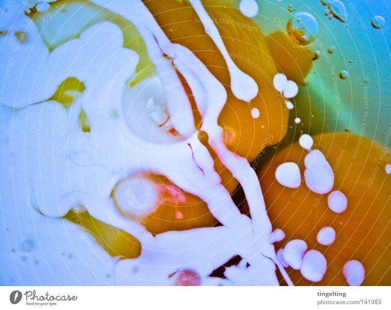 ich werde ein pfannkuchen blau weiß gelb hell orange abstrakt Kochen & Garen & Backen Ei mischen Sahne Eigelb Protein Eiklar