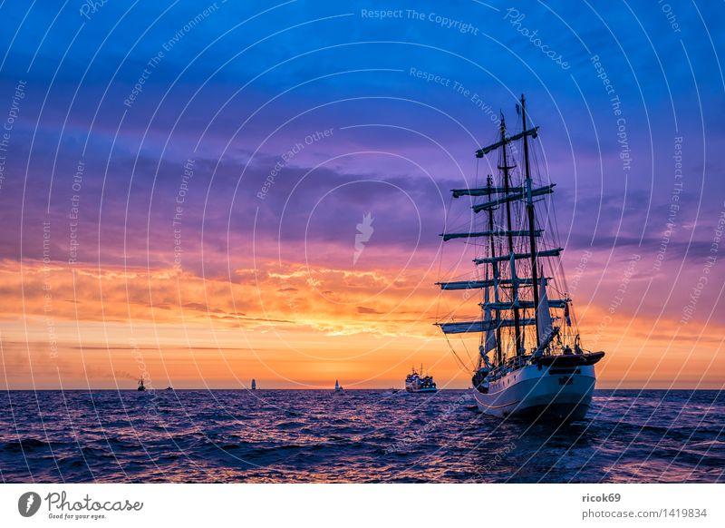 Segelschiffe auf der Hanse Sail Erholung Ferien & Urlaub & Reisen Tourismus Segeln Wasser Ostsee Meer Schifffahrt maritim gelb rot Romantik Idylle Natur