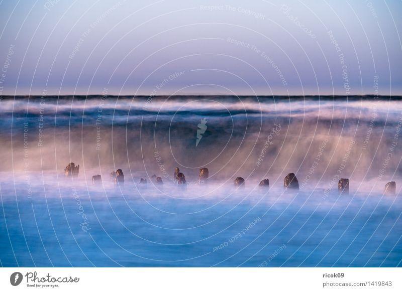Buhne an der Ostsee Erholung Ferien & Urlaub & Reisen Strand Meer Wellen Natur Landschaft Wasser Sturm Küste Holz Romantik Idylle Tourismus Buhnen