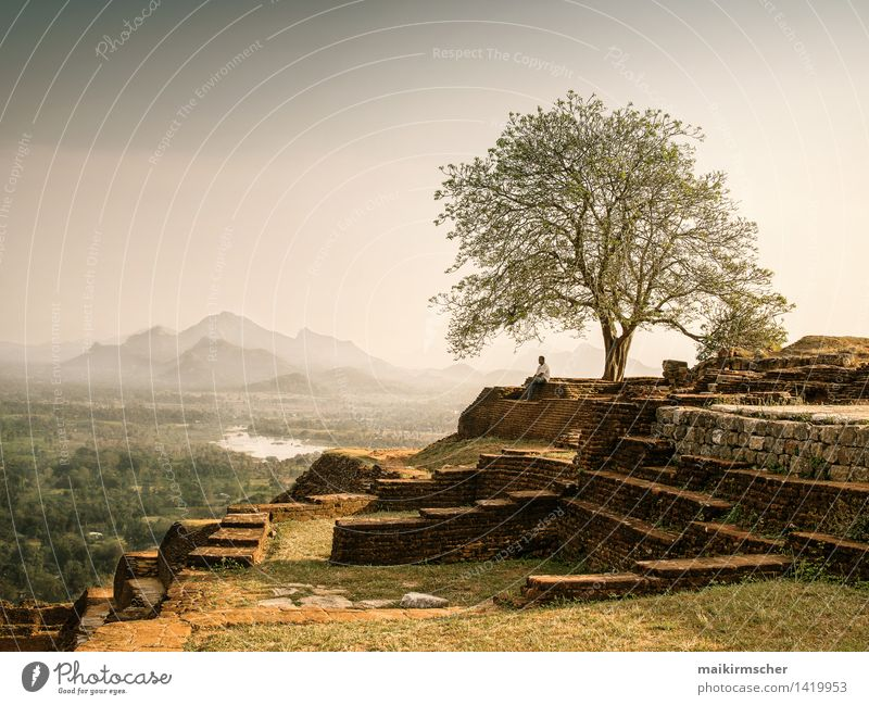 Entspannte Abendstimmung in Sri Lanka Mensch Natur Ferien & Urlaub & Reisen Erholung Landschaft ruhig Berge u. Gebirge Wärme Gefühle Gesundheit Stimmung träumen