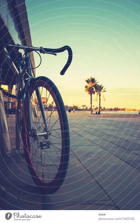 Sommer Outfit Strand Wärme Küste Fahrrad Fahrradfahren Fahrradtour Spanien Hauptstadt Palme Barcelona Promenade Rennrad