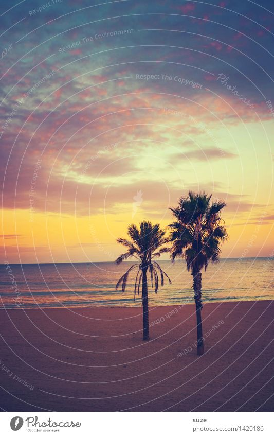 Es gibt unangenehmere Orte Ferien & Urlaub & Reisen Sommer Erholung Meer Einsamkeit ruhig Strand Gefühle Küste Glück Stimmung Sand Zusammensein Zufriedenheit