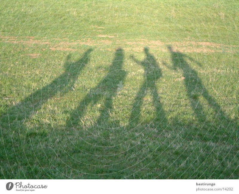 Schattengruppe Wiese Gras Menschengruppe Rasen