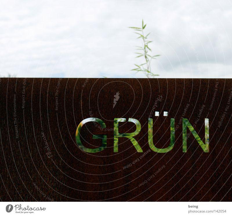 grün alt Garten Park Metall Metallwaren verfallen Stahl Rost Zweig Gartenbau Blech Laser Bambus Schrott Zweige u. Äste