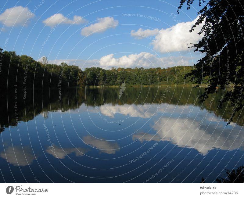 wendorfer see I ruhig See Symmetrie Mecklenburg-Vorpommern Waldsee
