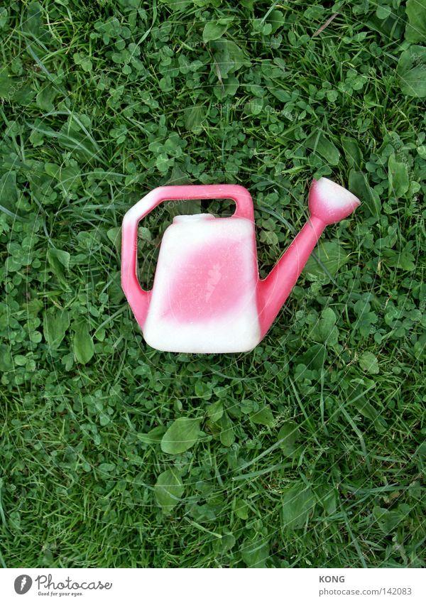 sonnenbrand Kannen Gießkanne gießen ausgebleicht UV-Strahlung Sonnenlicht Wiese Rasen Gras Halm Mitte zentral rot rosa grün Dekoration & Verzierung Handwerk uv