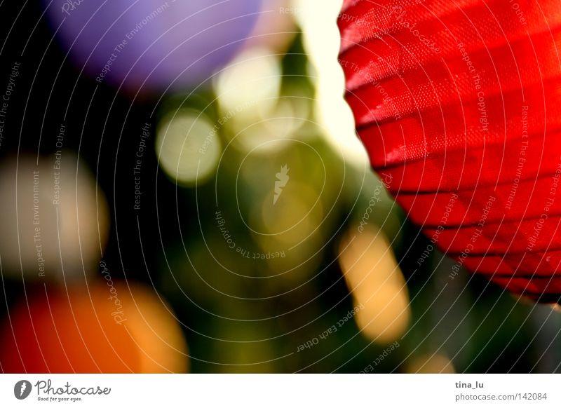 gartenfest Sommer Laterne Ball rot Licht Lichterkette Garten Gartenfest Farbe mehrfarbig sommerlich Physik rund orange Abend Abenddämmerung Stimmung gemütlich