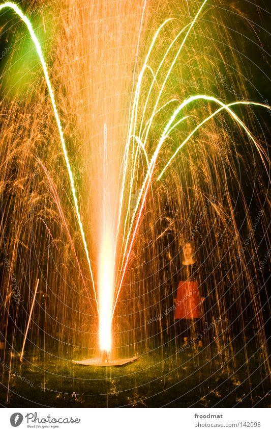 goldregen Frau Baum Freude dunkel Wiese Gras Feste & Feiern Party träumen Zufriedenheit Geburtstag blond Arme Rücken gefährlich Romantik