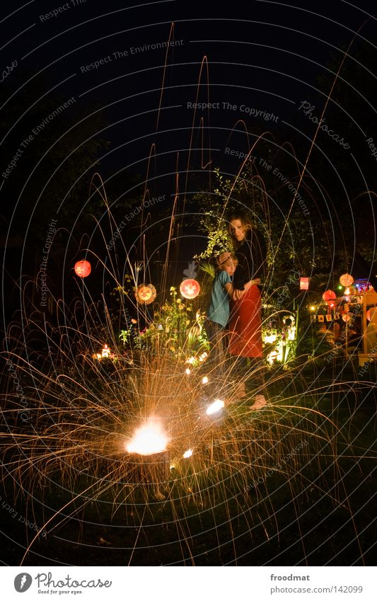 Nationalfeiertag Frau Kind Jugendliche Mädchen Baum Pflanze Sommer Freude Lampe dunkel Wiese Party Gras Garten träumen Familie & Verwandtschaft