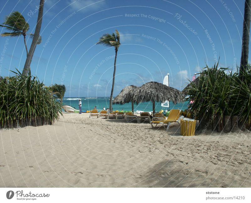 Strand Wasser Meer Sand Wind Kuba Palme Dominikanische Republik Sonnendach Punta Cana