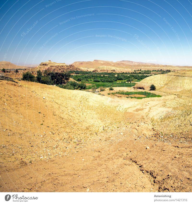 Oase Umwelt Natur Landschaft Erde Sand Himmel Wolkenloser Himmel Sommer Wetter Schönes Wetter Wärme Pflanze Baum Hügel Wüste Ait Benhaddou Marokko Kleinstadt