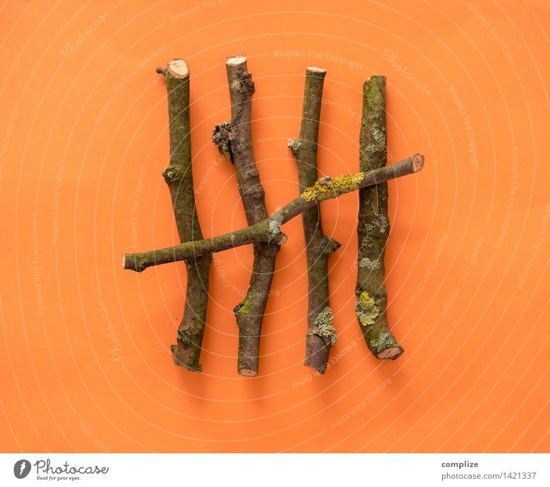 5 Natur natürlich Holz Schule orange lernen Ast Zeichen Geld Ziffern & Zahlen Zweig Internet sparen Gartenarbeit Rätsel zählen