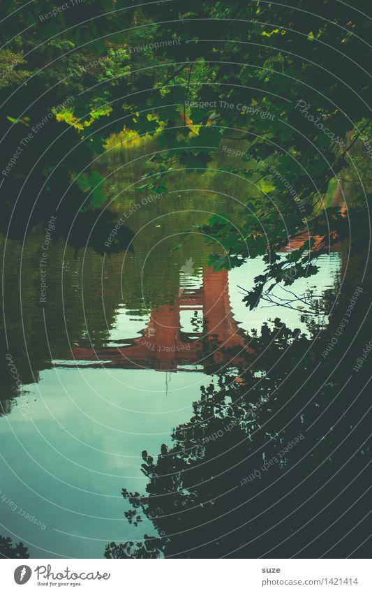 Die Brücke im Fluss Natur Ferien & Urlaub & Reisen grün Wasser Baum Landschaft ruhig dunkel Wald kalt Umwelt Herbst außergewöhnlich Ausflug