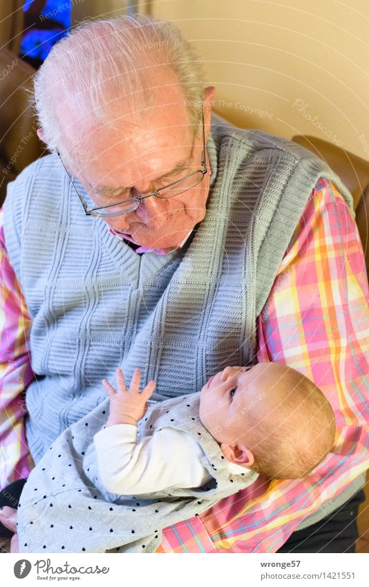 Begegnung Mensch maskulin Baby Mädchen Großvater 2 0-12 Monate 60 und älter Senior alt klein grau rosa rot weiß Glück Sympathie Interesse Stolz Urgroßvater