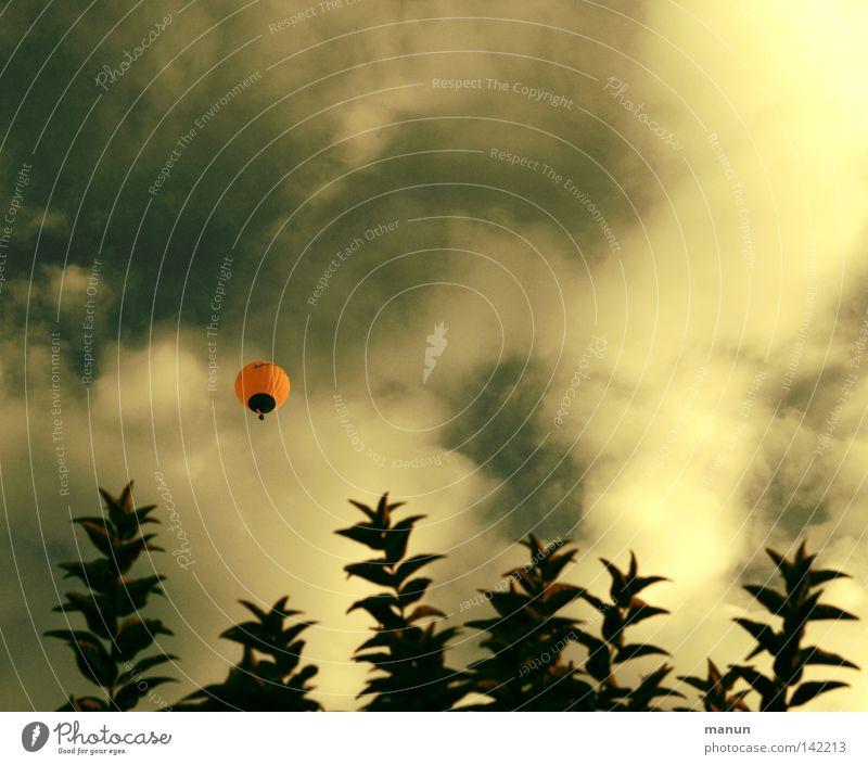 Himmelfahrt Ballone Wolken Baum Baumkrone Blatt Luft Brise frisch Ereignisse fahren Abenteuer Kick Aussicht Freizeit & Hobby gelb grün weiß Licht Physik