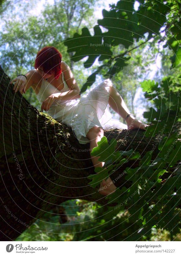 Momente streicheln Frau Mensch Natur Jugendliche weiß Baum Sonne grün Pflanze Sommer Ferien & Urlaub & Reisen ruhig Blatt Einsamkeit Wald Erholung