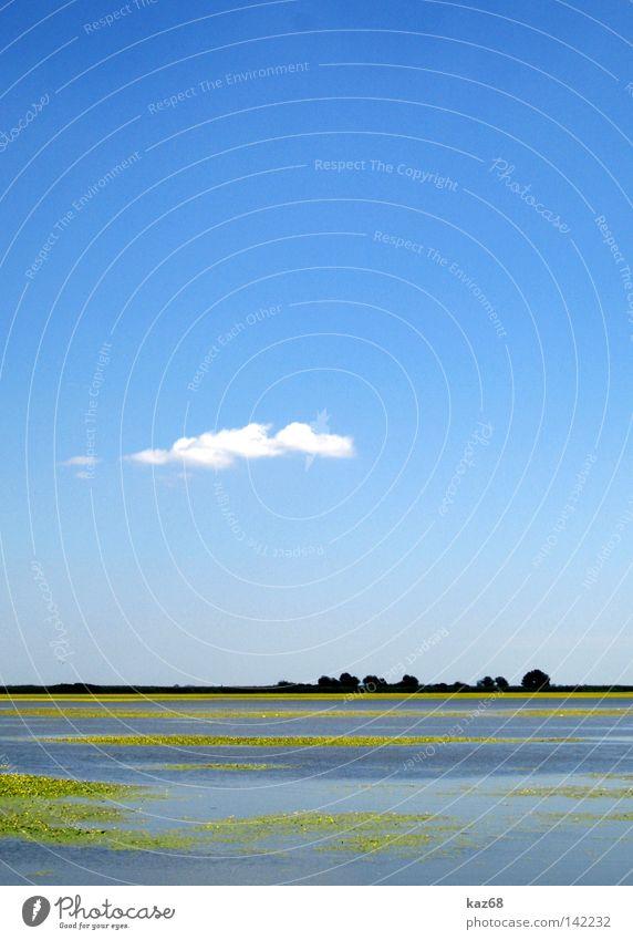 Puszta Natur Wasser schön Himmel weiß Baum blau Pflanze Wolken Einsamkeit Tier Ferne gelb See Park Wärme