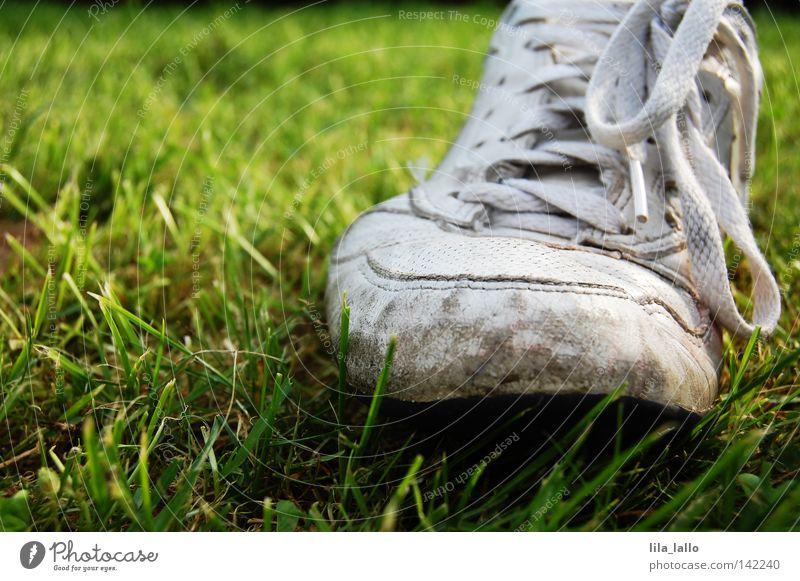 Treuer Begleiter Natur alt Hand Pflanze Wiese Bewegung Gras Schuhe gehen dreckig laufen wandern leer kaputt Bekleidung Schwimmbad